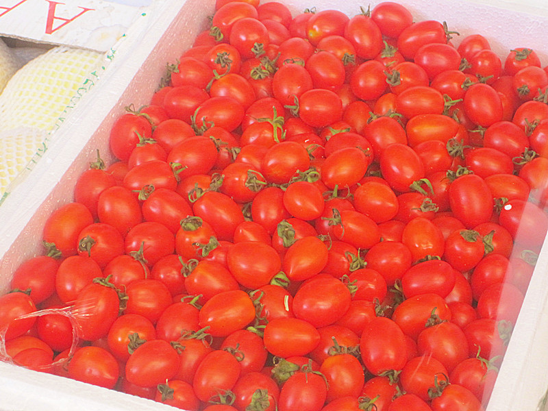 红彤彤的的小番茄好可爱哟~~就是一箱子这么多,吃不掉哎~~而且尝了下