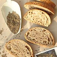5分钟面包(3)-粗黑麦面包Pumpernickel Bread