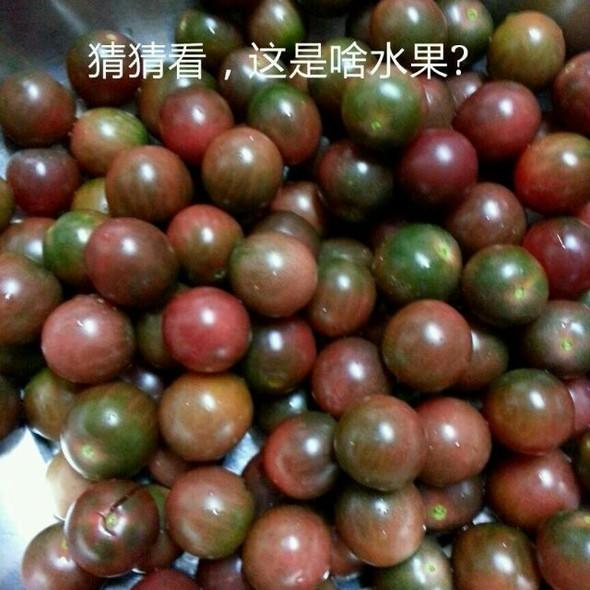 紫番茄(紫圣女果)