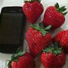 超大红草莓