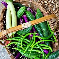 家里新鲜的蔬菜