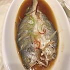 野生大黄鱼