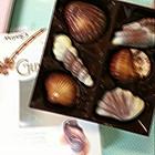 法国可爱巧克力