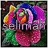 selimah