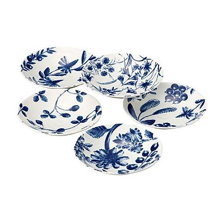 日本AITO Botamical 美浓烧陶瓷餐盘早午晚餐盘5件套