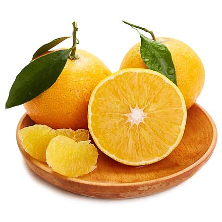 爱媛38号果冻橙子 5斤 13-16枚装 中果 包邮