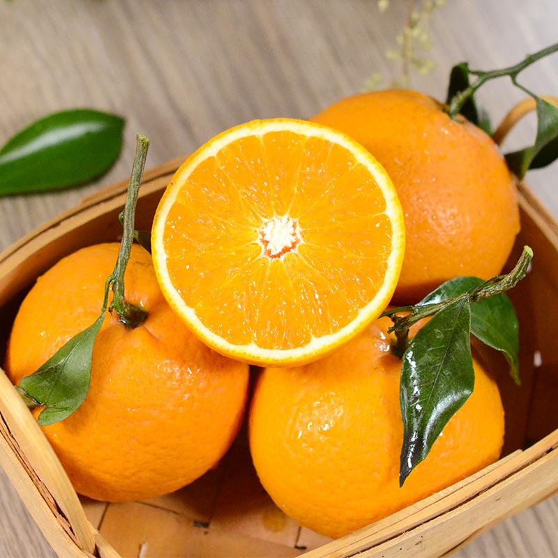 四川青见柑橘 5斤装