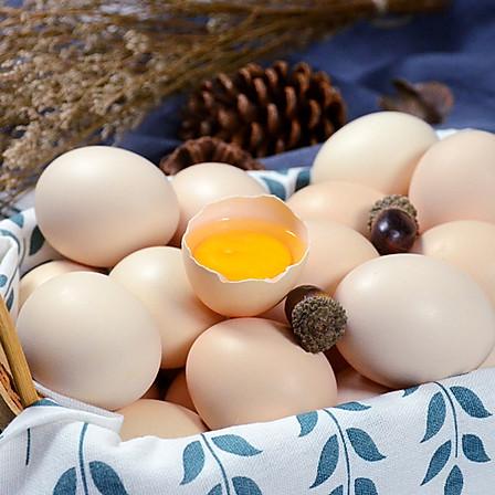 橡子树下土鸡蛋30枚
